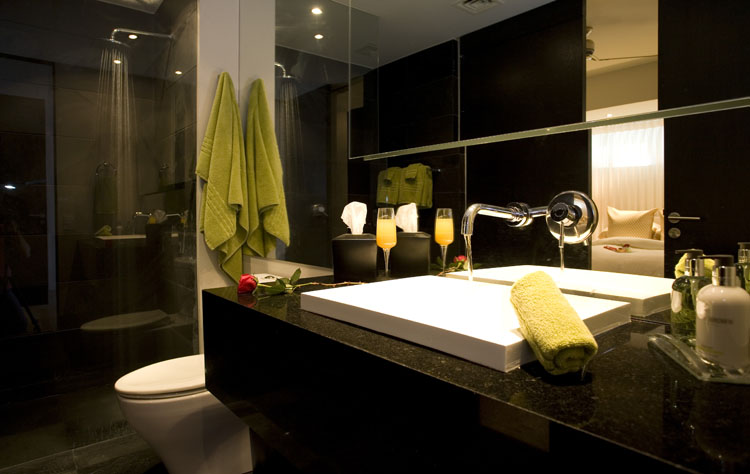 Guest bathroom puerto vallarta mexico for Modern guest bathroom designs