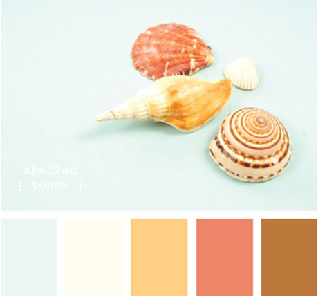 Orange-Turquoise-Color-Palette with sea shells