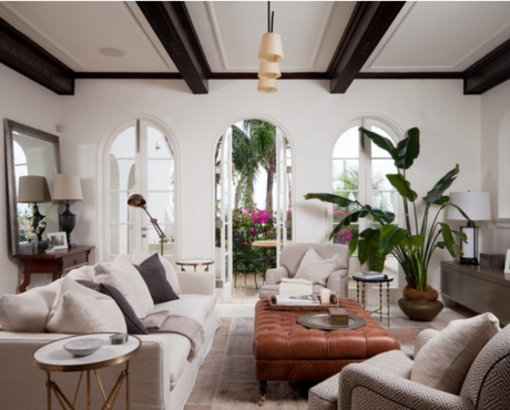 Interior Plants Orange County Designers