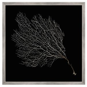 Black and White Sea Fan Art 2