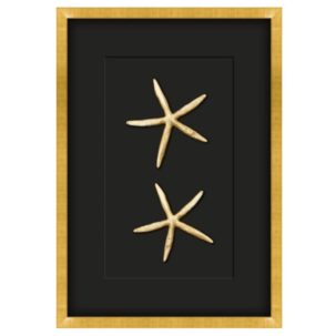Gilded Gold Starfish Shadow Box Art - Small