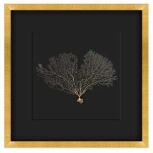 Gold and Black Seafan Shadow Box Art