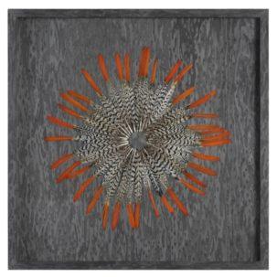 Kumara Feather Shadow Box Art