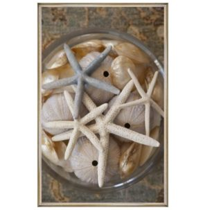 Layered Starfish Photography Art
