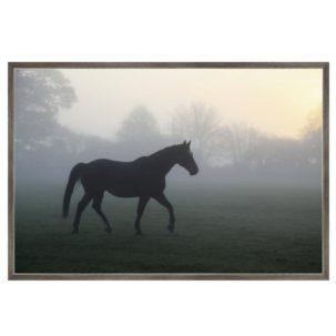 Misty Paddock Horse Art