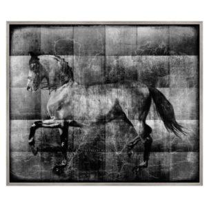 The Noble Stallion Horse Art