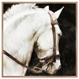The Prestige Horse Art