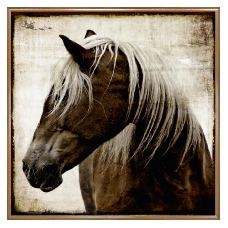 Tribute Horse 171 Newport Coast Interior Design